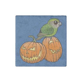 Kakapo Halloween Stone Magnet