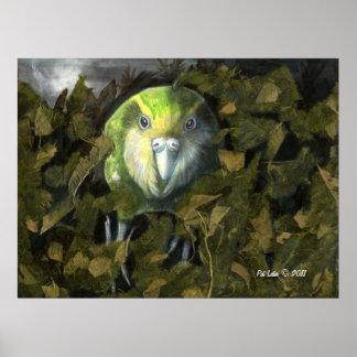 Kakapo in the Leaves Poster