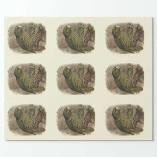 Kakapo Wrapping Paper