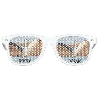 KAKAW Sunglasses