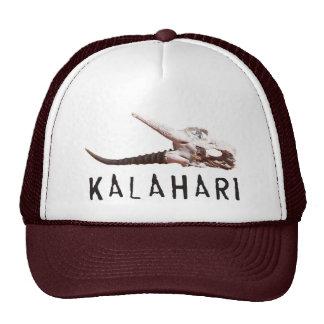 Kalahari desert in Africa: Dead antelope skull Cap