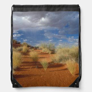 Kalahari Desert Scene, Kgalagadi Transfrontier 2 Drawstring Backpacks