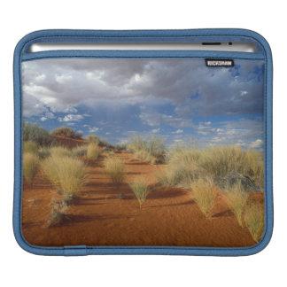 Kalahari Desert Scene, Kgalagadi Transfrontier 2 iPad Sleeve