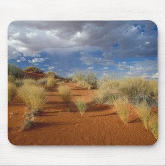 Kalahari Desert Scene, Kgalagadi Transfrontier 2 Mouse Mat