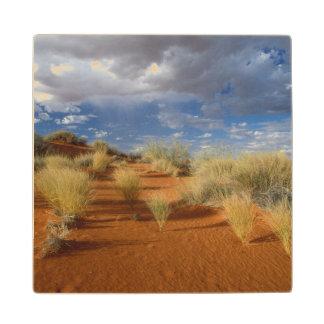 Kalahari Desert Scene, Kgalagadi Transfrontier 2 Wood Coaster