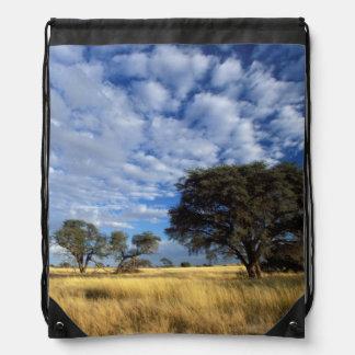 Kalahari Desert Scene, Kgalagadi Transfrontier Drawstring Bag