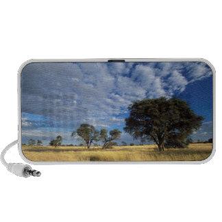 Kalahari Desert Scene, Kgalagadi Transfrontier Portable Speakers