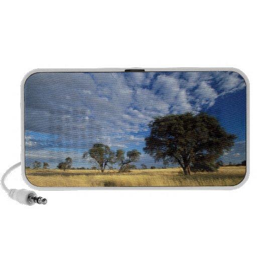 Kalahari Desert Scene, Kgalagadi Transfrontier Mp3 Speakers