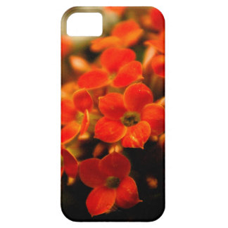 Kalanchoe flowers bouquet iPhone5 case