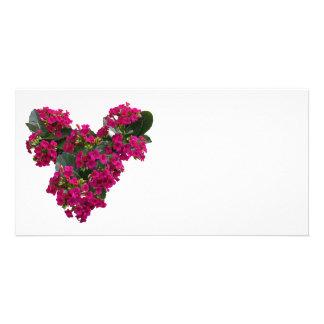 Kalanchoe Heart Customized Photo Card
