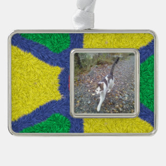 Kaleidoscope colorful furry silver plated framed ornament