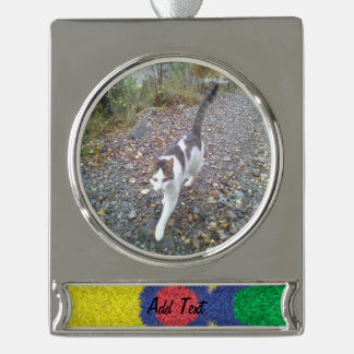 Kaleidoscope colorful furry silver plated banner ornament