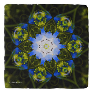 Kaleidoscopic Baby Blue Eyes Trivet