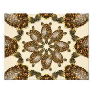 "Kaleidoscopic Hawksbill Sea Turtle 14"" x 11"" Print Photo"