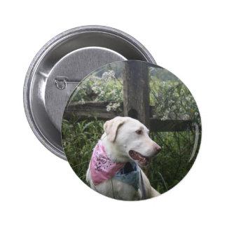 Kali Dog 6 Cm Round Badge