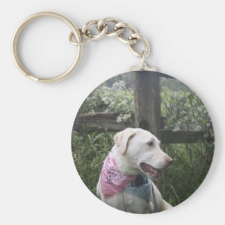 Kali Dog Basic Round Button Key Ring