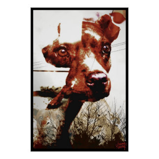 Kali Doggy Poster