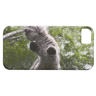 kalispell, montana, united states of america case for the iPhone 5