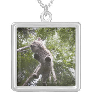 kalispell, montana, united states of america silver plated necklace
