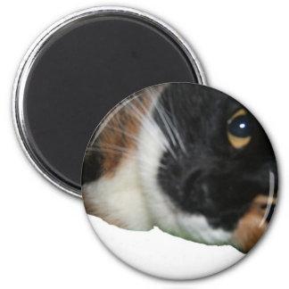 Kalua a 6 cm round magnet