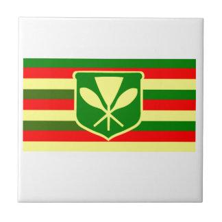Kanaka Maoli - Native Hawaiian Flag Ceramic Tile