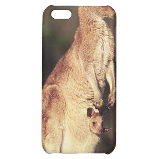 Kangaroo and Joey iPhone 5C Case