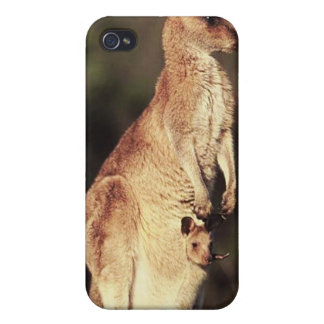 Kangaroo and Joey Case For iPhone 4