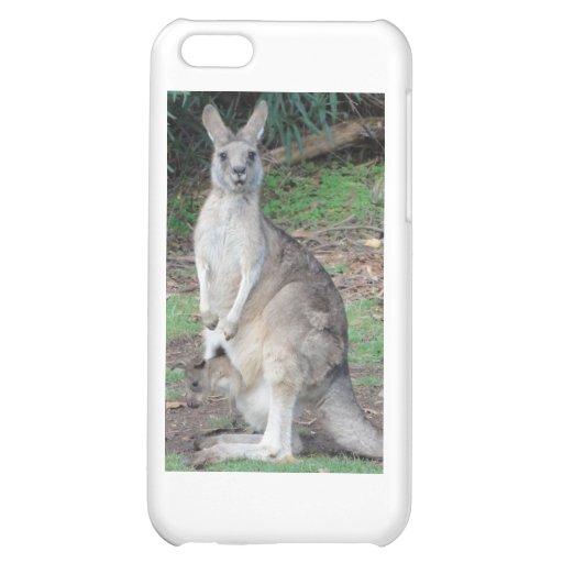 Kangaroo and Joey iPhone 5C Covers