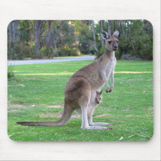 Kangaroo and Joey Mouse Pad