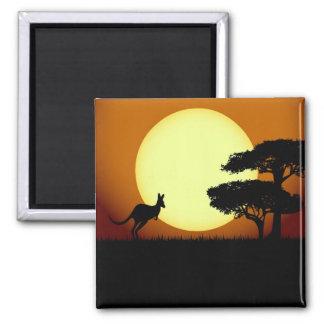 Kangaroo at sunset square magnet
