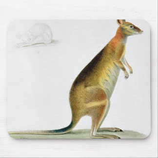 Kangaroo, engraved by Coutant Mouse Pad