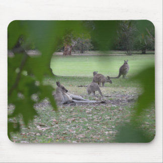 kangaroo family mouse pad