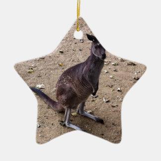 Kangaroo Looking at the Camera Christmas Ornament