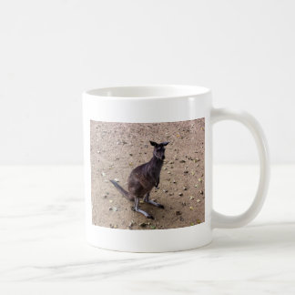 Kangaroo Looking at the Camera Coffee Mug