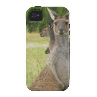 Kangaroo Paddock iPhone 4/4S Case