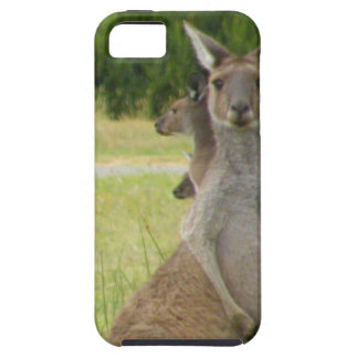 Kangaroo Paddock iPhone 5 Case