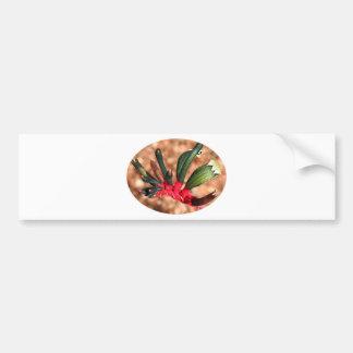 Kangaroo paw  flower in bloom (oval) bumper stickers