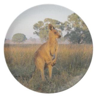 Kangaroo Plate