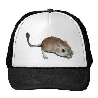 Kangaroo rat cap