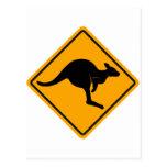 Kangaroo Road Sign Post Card
