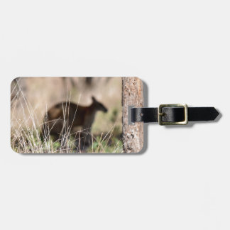 KANGAROO SILHOUETTE IN GRASS AUSTRALIA LUGGAGE TAG