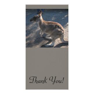 Kangaroo Stands on Two Back Feet Customised Photo Card