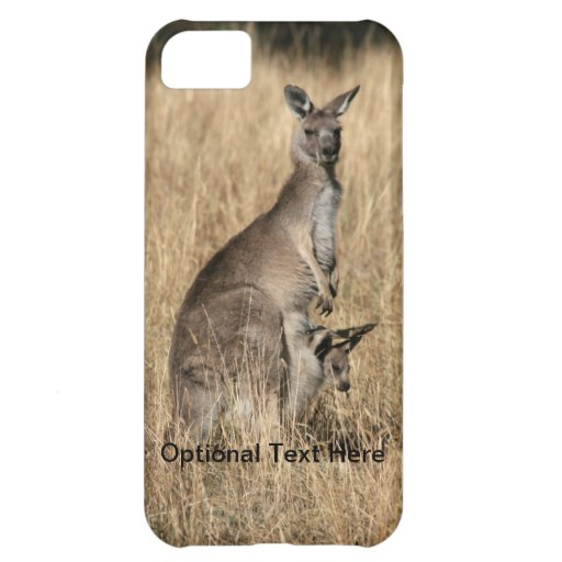 Kangaroo with Baby Joey in Pouch iPhone 5C Cases