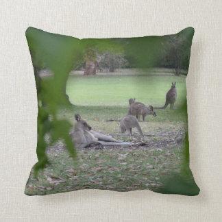 Kangaroos family cushion