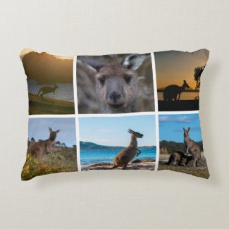 Kangaroos of Australia Decorative Cushion