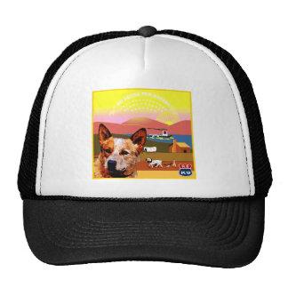 Kansas Australian Cattle Dog Cap