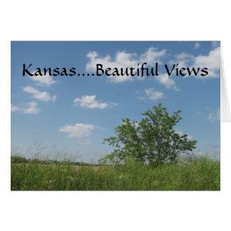 Kansas Cool Greeting Card