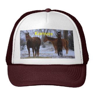 Kansas Horses with Tree's Truckers Hat