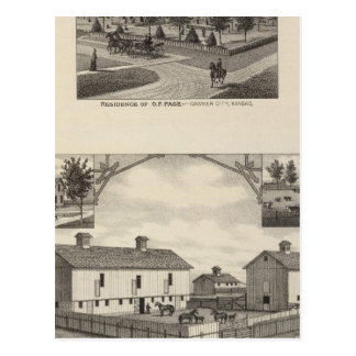 Kansas Live Stock County in Cawker City Postcard