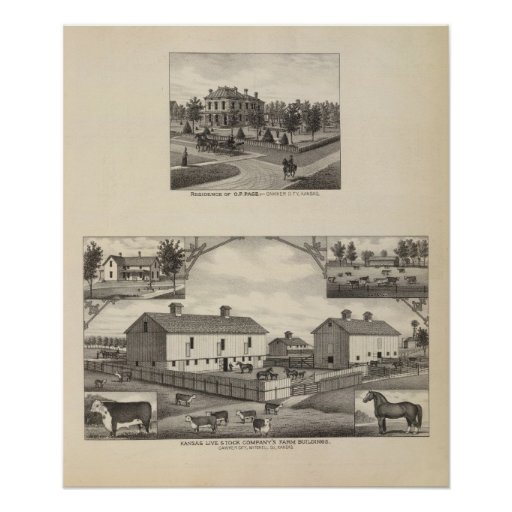 Kansas Live Stock County in Cawker City Print